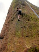 Rock Climbing Photo: Steve sussing the line on TR.