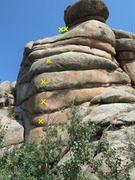 Rock Climbing Photo: Short sport route on backside of East LA.