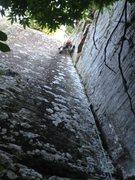 Rock Climbing Photo: Poison Ivy, Sam's Throne, Arkansas. 2014