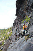 Rock Climbing Photo: Bill Schneider leading P2 during the FA, the crux ...