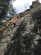 Rock Climbing Photo: Practice wall