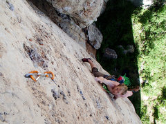Rock Climbing Photo: Moving up Californios