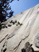 Rock Climbing Photo: Sunkist Wall