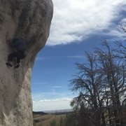 Rock Climbing Photo: Rising from the Plains @ Wild Iris. Thin, sharp an...