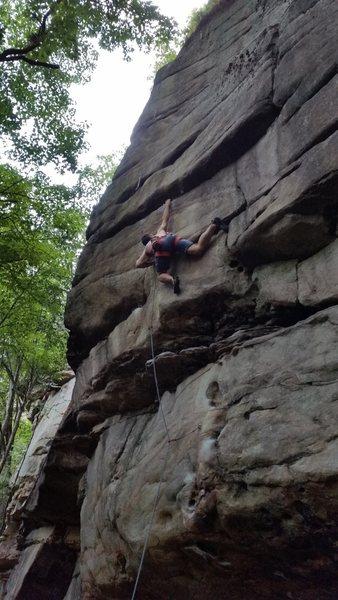 Rock Climbing Photo: Full jessery, no dyno.