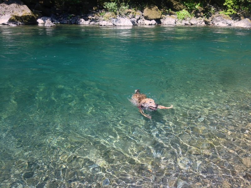patty and the chetco river