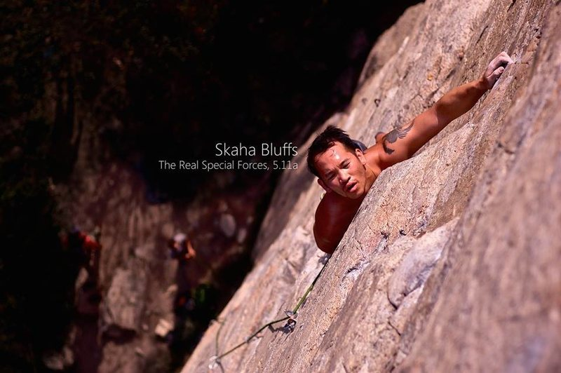 Rock Climbing Photo: The real special forces, 5.11a Skaha, BC