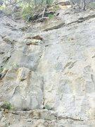 "Rock Climbing Photo: Kings bluff ""Old fart"" 5.8"