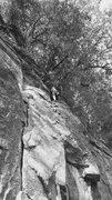 Rock Climbing Photo: Kings bluff