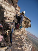Rock Climbing Photo: CAt in the Hat