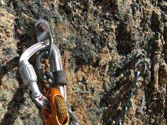 Rock Climbing Photo: Old anchor on Jungle Boy.