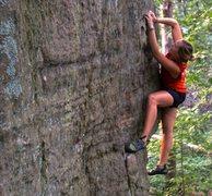 Rock Climbing Photo: high anxiety arete