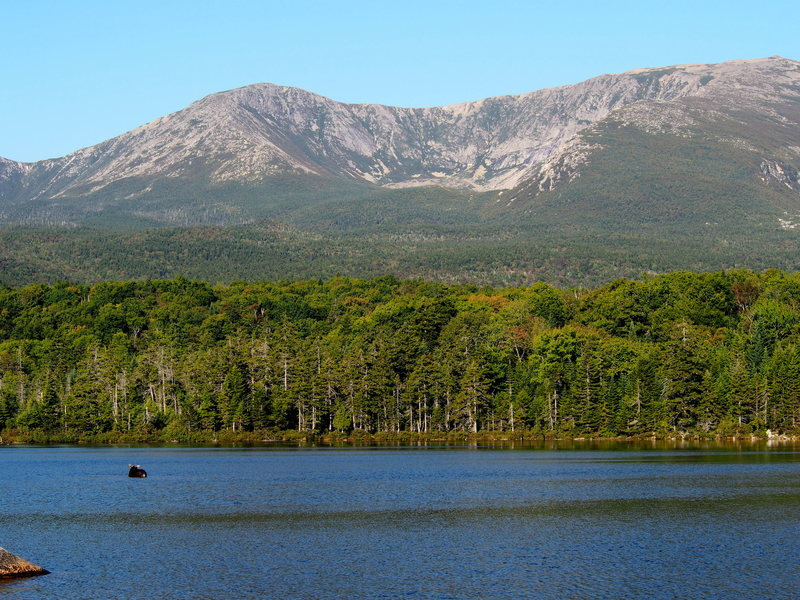 Looks like the Moose might be interested in climbing in the North Basin !  (Photo from Sandy Brook Pond, 5-8 min. flat walk from the Ranger Station at Roaring Brook@SEMICOLON@ no one else was there...Labor Day Sunday 2015 !