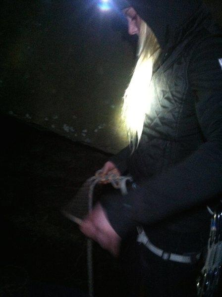 Night climbing at Land Before TIme