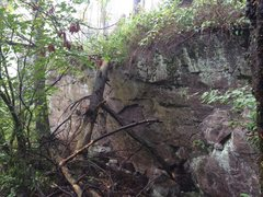 Rock Climbing Photo: Get Loonie