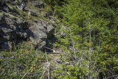 Rock Climbing Photo: The location of the gear anchor i used at the top ...