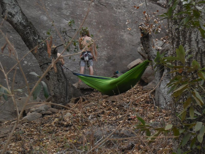 """Climbers working on """"Lama,"""" with another relaxing in a hammock over the poison oak."""