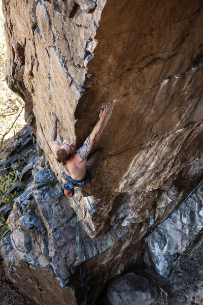 Rock Climbing Photo: Jesse Crandall on Cross-Eyed and Painless in Big C...