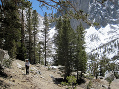 Rock Climbing Photo: High along the North Fork Trail - with the walls o...