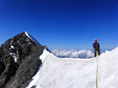 Rock Climbing Photo: Eiger. Summit ridge.