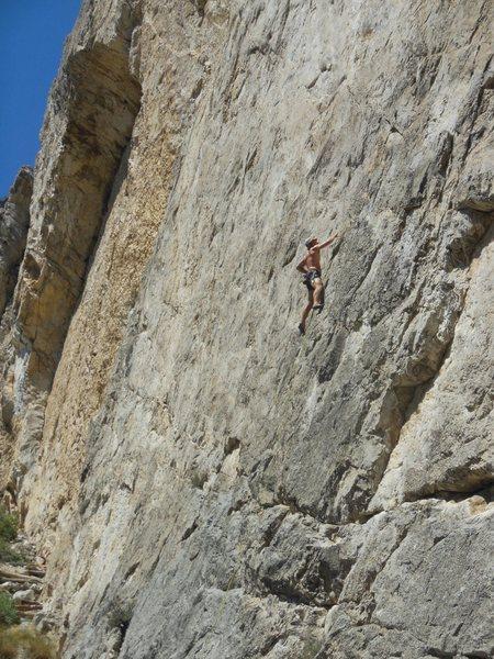 Limestone like velcro