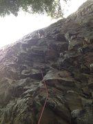 Rock Climbing Photo: Trunk monkey 12a, chekeamus canyon, squamish