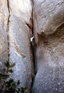 Rock Climbing Photo: adopt a crag