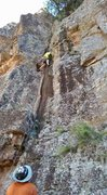 Rock Climbing Photo: Aaron Collins on the First Ascent of Southern Comf...