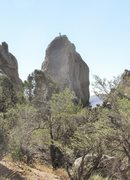 Rock Climbing Photo: Morning Glory Spire; from the Window Rock trail.