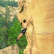 Rock Climbing Photo: Wilson on the dyno