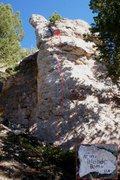 Rock Climbing Photo: Mini Blonde Bomb (September 2015)