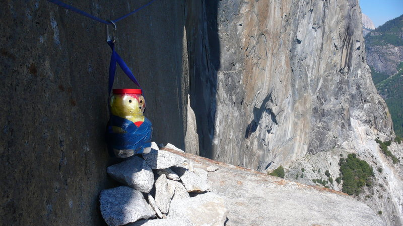 Winnie the Poo, hanging out on El Cap Tower