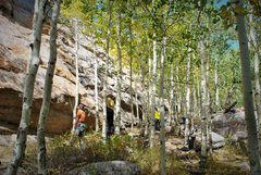 Rock Climbing Photo: A shady belay.  Aspens are turning yellow!