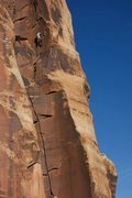 Rock Climbing Photo: Hands forever!