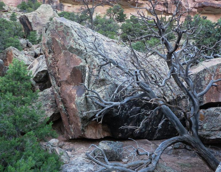 Rock Climbing Photo: Kava'a east face.