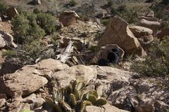 Rock Climbing Photo: Humbled to a nap by Horsasaurus (FA)