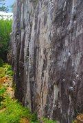 Pet Wall, Murrin Park, Squamish