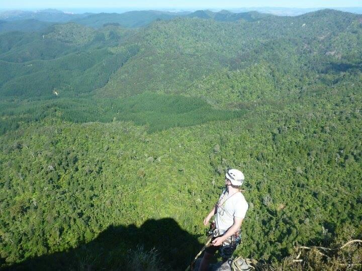 Rock Climbing Photo: Climber at top of pitch 5, Archibald Baxter