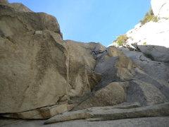 Rock Climbing Photo: Bulgetastic!