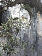 Rock Climbing Photo: sample of cave walls