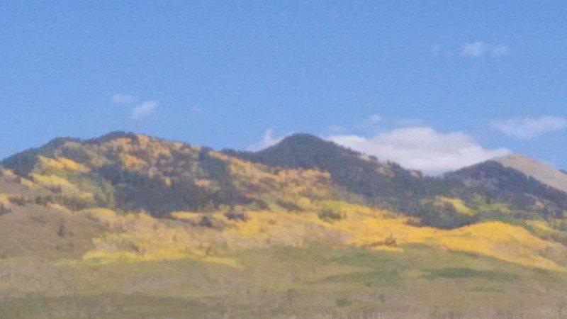 Rock Climbing Photo: Aspen in the fall