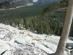 Rock Climbing Photo: From the tree, diagonal down towards the very obvi...