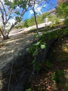 Rock Climbing Photo: P1 Variation 2 - Triple Trunked Birch and right si...
