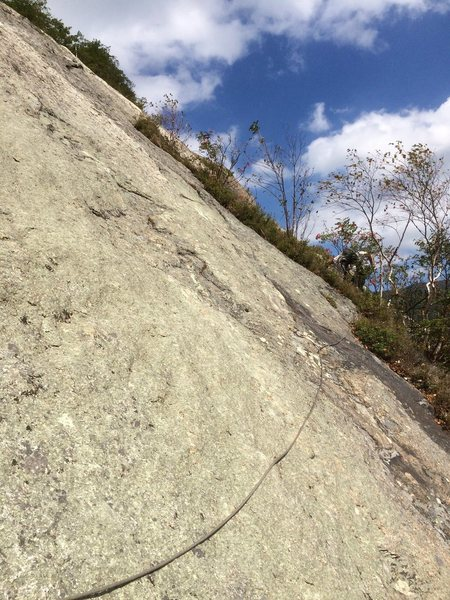 "Moving from Star Trek's 2blt anchor (end of P3) to the bush/tree ledge of P4 (1966 belay ""ledge"")"