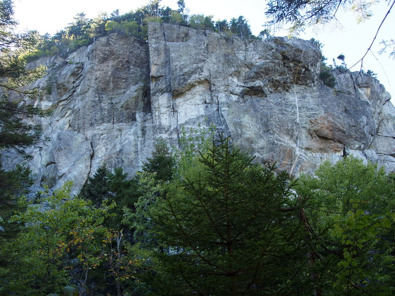Wild River Crag - from trail just above where the climber's path crosses stream to the cliff.