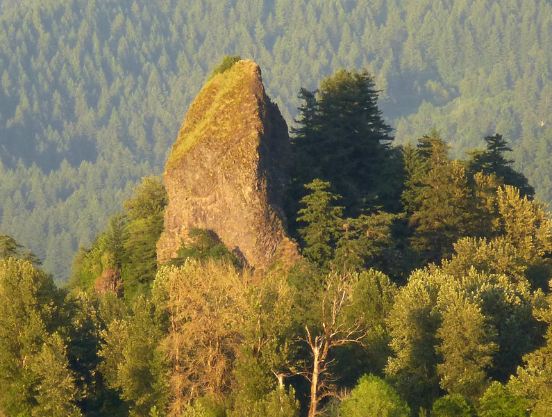 Rock Climbing Photo: Evening shot of Rooster Rock...best time to climb,...