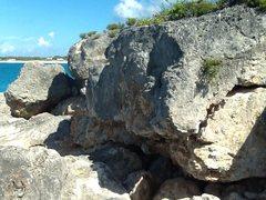 Rock Climbing Photo: Gripper... Grade unknown