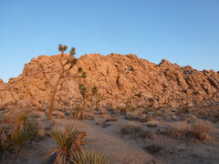 Rock Climbing Photo: Here is the best Pic I have of the route...WHen yo...