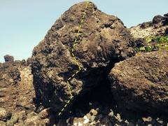 Rock Climbing Photo: Sharp Lava rock