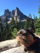 Rock Climbing Photo: North Cascades